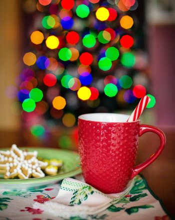 Holiday cookie and candy cane hot chocolate in front of a tree.